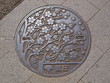Manhole drain cover on the street at Ueno park, Tokyo - Japan - 72748710