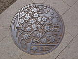 Manhole drain cover on the street at Ueno park, Tokyo - Japan