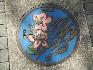 Manhole drain cover on the street at Tsukiji, Tokyo - Japan