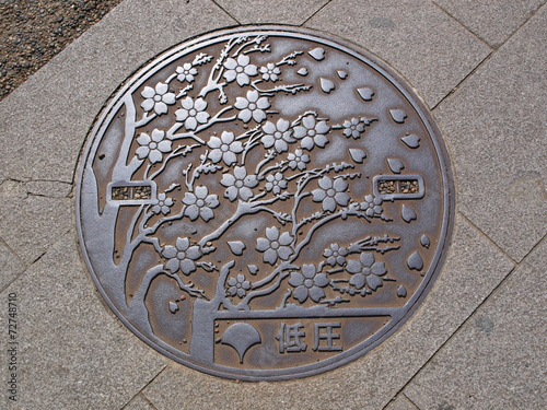 Foto op Aluminium Tunnel Manhole drain cover on the street at Ueno park, Tokyo - Japan