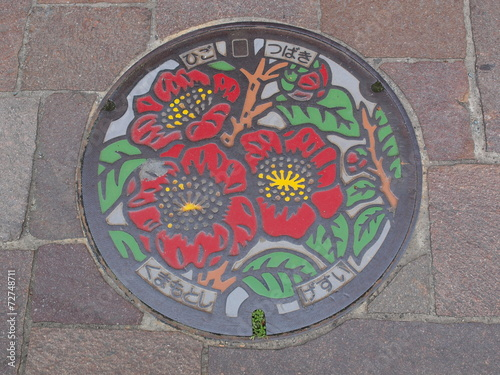 Foto op Aluminium Tunnel Manhole drain cover on the street at Kumamoto, Japan
