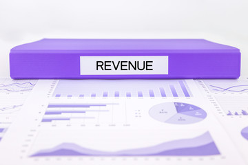 Revenue documents, graph analysis and financial report