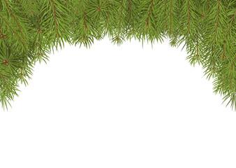 Tannenzweige, Weihnachten, Hintergrund, Vorlage, Textfeld, Weiß