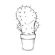canvas print picture - Freundlicher Kaktus