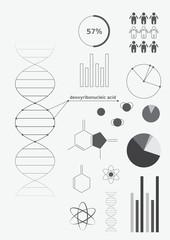Infographics deoxyribonucleic acid (DNA)