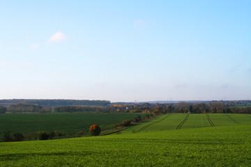 Thüringen - Feld im Herbst