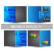 set of business brochure/flyer