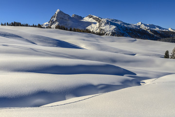 Winter in the Pale di San Martino Natural Park. Italy