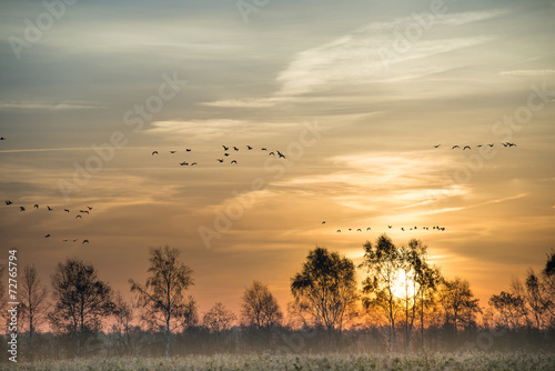 canvas print picture the moorland in the autumn