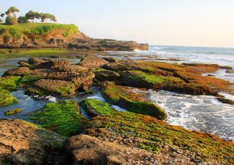 Sea coast. The island of Bali. Indonesia.