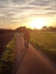 Fahrradfahrer Sonnenuntergang