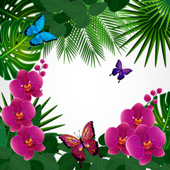 Floral design background. Orchid flowers with butterflies.
