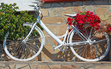 White vintage bicycle decorated with red flowers
