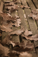 Herbstlicher Sitzplatz