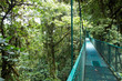 Suspended bridge above the forest