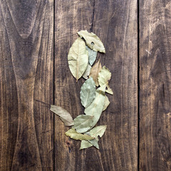 dry bay leaf on an old wooden board