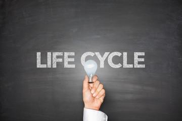 Life cycle on blackboard