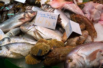Raw  fish   on spanish market