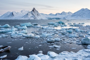 Extraordinary, icy world of the Arctic fjord