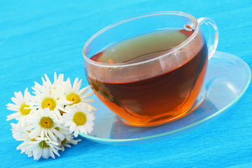 Cup of tea and white daisies on blue background with copy space