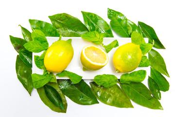 Zitronen in Schale
