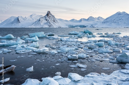 Extraordinary, icy world of the Arctic fjord - 72790335