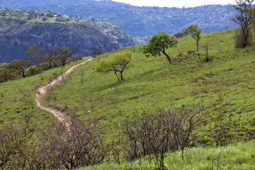 Sand Footpath Winding Through Grassland of Nature Reserve