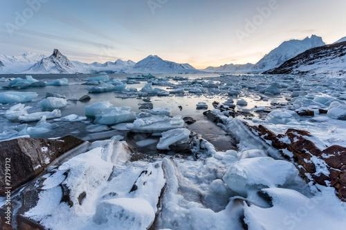 Spoed canvasdoek 2cm dik Gletsjers Spitsbergen, Svalbard - Arctic winter landscape