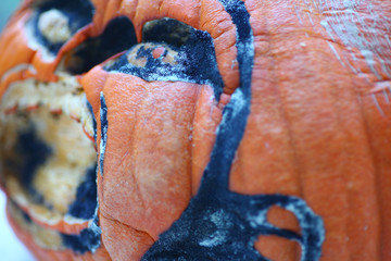 Old Halloween pumpkin decaying