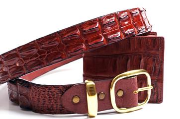 crocodile wallet and belt