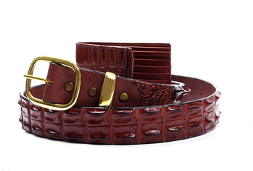 crocodile belt and wallet