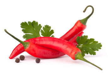 Hot red chili or chilli pepper and parsley leaves still life