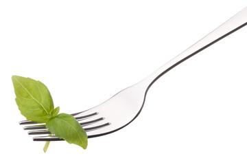 Fresh basil leaf  on fork isolated on white background cutout. H