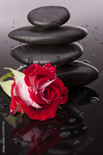 Spa stone and rose flowers still life. Healthcare concept. - 72797732