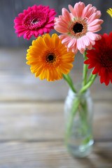 beautiful bouquet of colorful gerbera