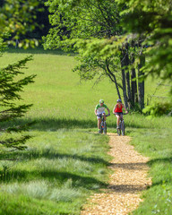 Naturgenuß Mountainbiken