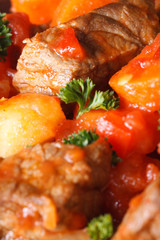 beef stew with vegetables in a tomato macro. Vertical