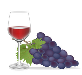 Grape and Glass wine ,Vector illustration