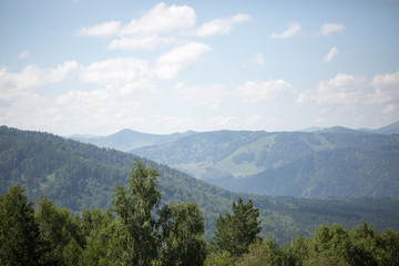 Green hills of Altai