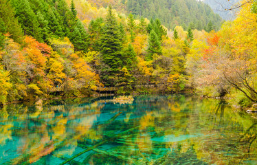 Autumn in Jiuzhaigou national park, Sichuan, China