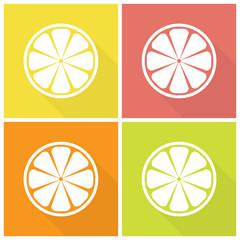 Citrus fruits icons