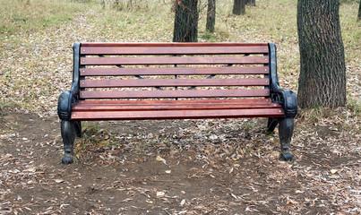 Brown wooden bench in autumn park