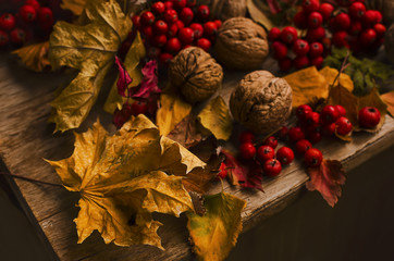 Autumn leaves, walnuts and ashberries on the wooden table