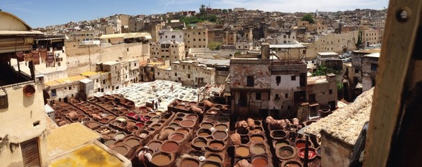 conceria marocco