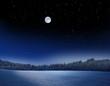 Leinwanddruck Bild - Winterlandschaft bei Vollmond