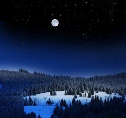 Winterlandschaft bei Vollmond