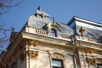Fragment Vileisio Palace