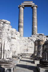 Temple and Oracle of Apollo in Didyma