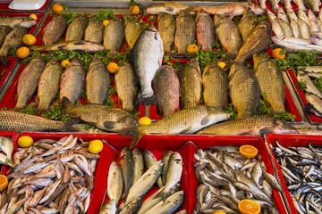 balık satışı