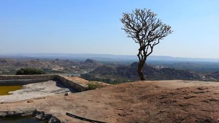 Walk around water tank and lone tree near Hanuman Temple